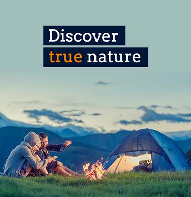 Discover true nature